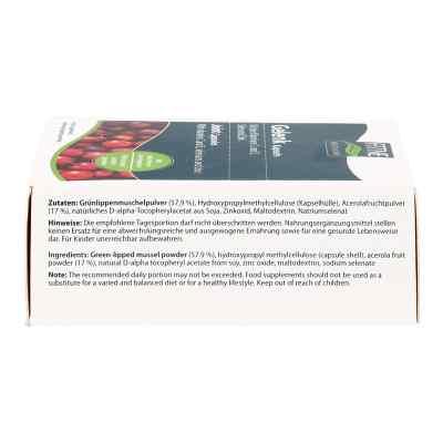 Grünlipp Muschel Gelenk Kapseln  bei juvalis.de bestellen