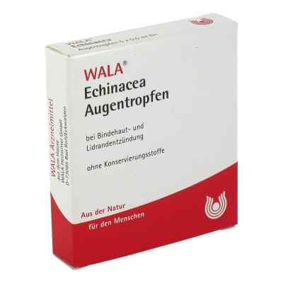 Echinacea Augentropfen  bei juvalis.de bestellen