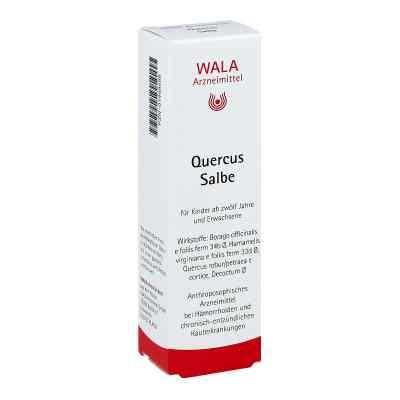 Quercus Salbe  bei juvalis.de bestellen