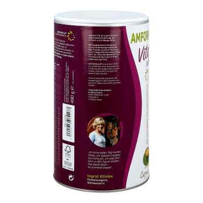 Amformula Diet Cappuccino Pulver  bei juvalis.de bestellen