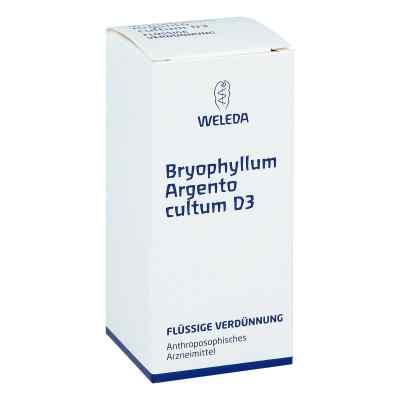 Bryophyllum Argento Cultum Dilution D3  bei juvalis.de bestellen