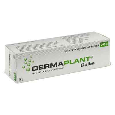 Dermaplant Salbe  bei juvalis.de bestellen