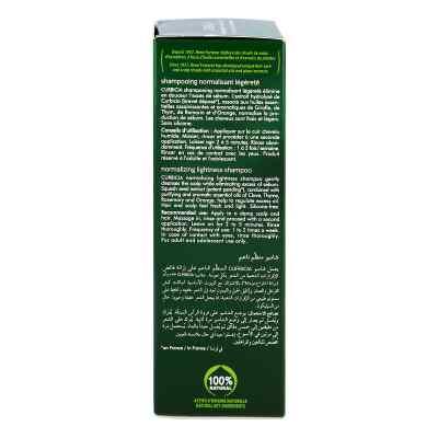 Furterer Curbicia Reg.shampoo  bei juvalis.de bestellen