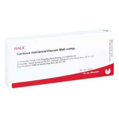 Carduus Marianus/ Viscum Mali Comp. Ampullen  bei juvalis.de bestellen