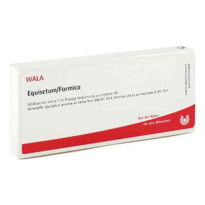 Equisetum/formica Ampullen  bei juvalis.de bestellen