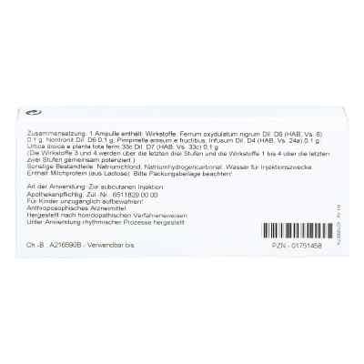 Ferrum Silicium Comp. Ampullen  bei juvalis.de bestellen
