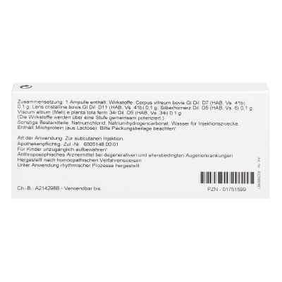Hornerz/ Corpus Vitreum Comp. Ampullen  bei juvalis.de bestellen