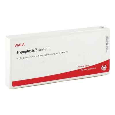 Hypophysis/stannum Ampullen  bei juvalis.de bestellen