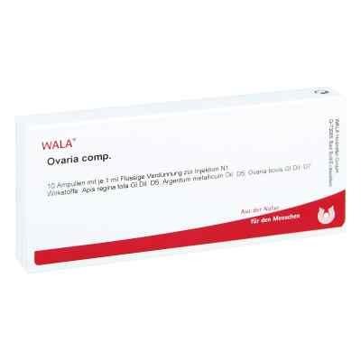 Ovaria Comp. Ampullen  bei juvalis.de bestellen