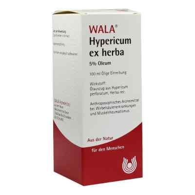 Hypericum Ex Herba 5% Oleum  bei juvalis.de bestellen
