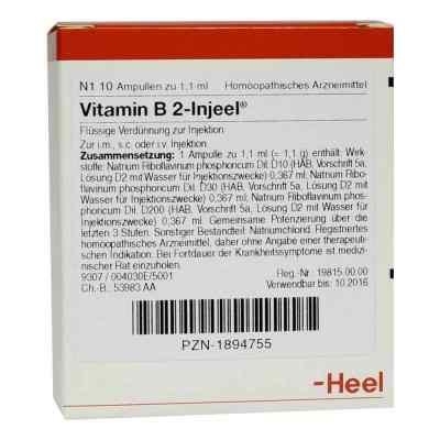 Vitamin B2 Injeel Ampullen  bei juvalis.de bestellen