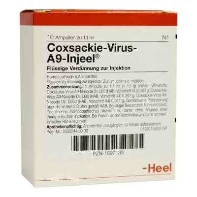 Coxsackie-virus A9 Injeel Ampullen  bei juvalis.de bestellen