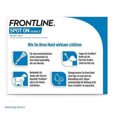 Frontline Spot on Hund 10 veterinär Lösung gegen Flöhe und Zecke  bei juvalis.de bestellen
