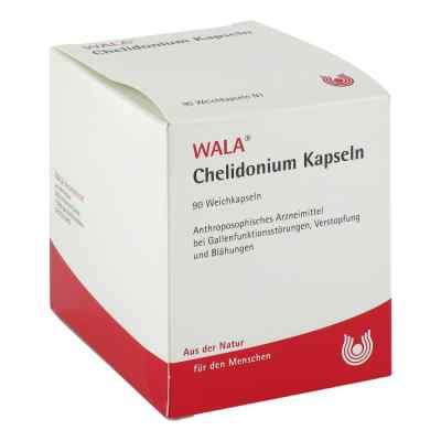 Chelidonium Kapseln  bei juvalis.de bestellen