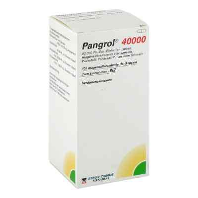 Pangrol 40000  bei juvalis.de bestellen