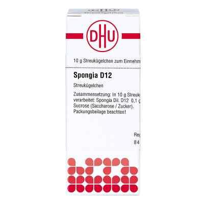 Spongia D12 Globuli  bei juvalis.de bestellen