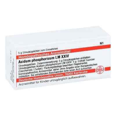 Lm Acidum Phosphoricum Xxiv Globuli  bei juvalis.de bestellen