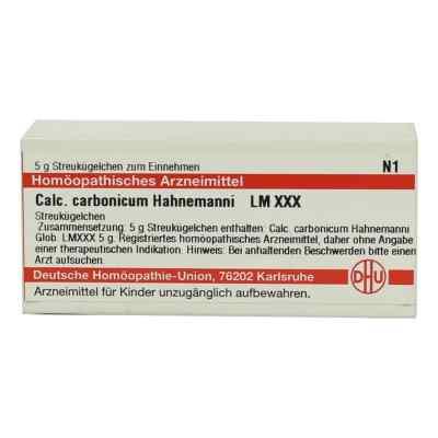 Lm Calcium Carb. Xxx Globuli Hahnemanni  bei juvalis.de bestellen