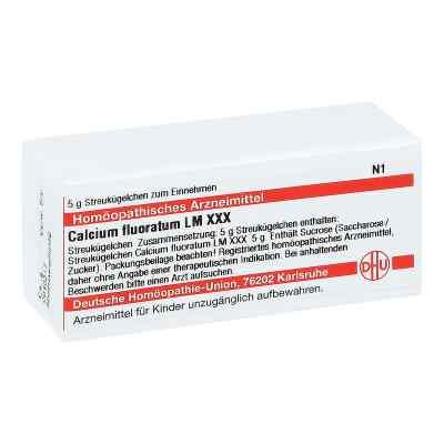 Lm Calcium Fluoratum Xxx Globuli  bei juvalis.de bestellen