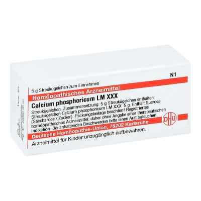 Lm Calcium Phosphoricum Xxx Globuli  bei juvalis.de bestellen