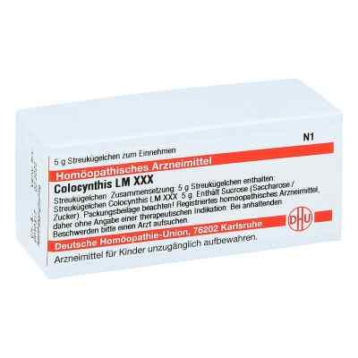Lm Colocynthis Xxx Globuli  bei juvalis.de bestellen