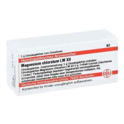 Lm Magnesium Chloratum Xii Globuli  bei juvalis.de bestellen