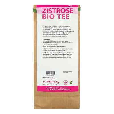 Zistrose Bio Tee  bei juvalis.de bestellen