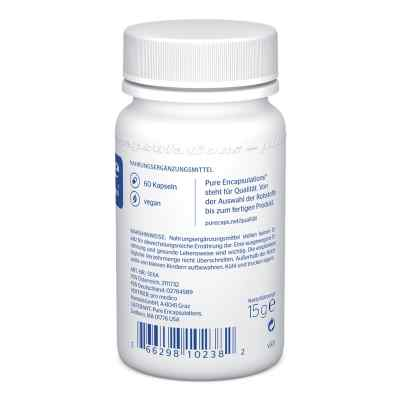 Pure Encapsulations Selen Selenmethionin Kapseln  bei juvalis.de bestellen