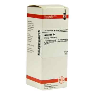 Aesculus D4 Dilution  bei juvalis.de bestellen