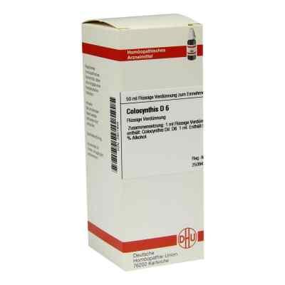 Colocynthis D6 Dilution  bei juvalis.de bestellen