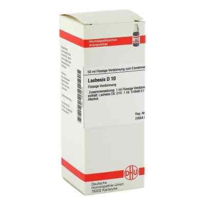 Lachesis D10 Dilution  bei juvalis.de bestellen