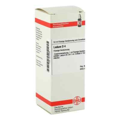 Ledum D4 Dilution  bei juvalis.de bestellen