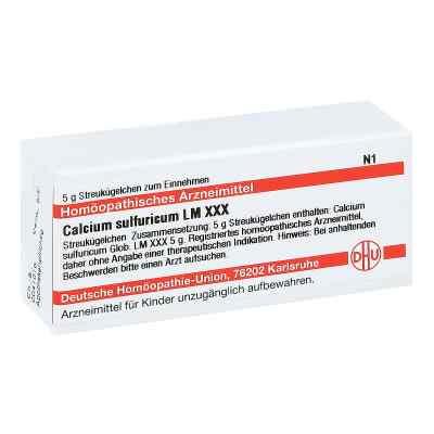 Lm Calcium Sulfuricum Xxx Globuli  bei juvalis.de bestellen