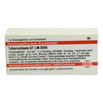 Lm Tuberculinum Gt Xviii Globuli  bei juvalis.de bestellen