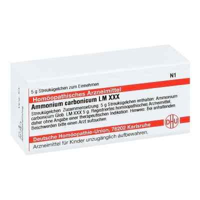 Lm Ammonium Carbonicum Xxx Globuli  bei juvalis.de bestellen