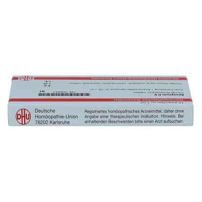 Apocynum D6 Ampullen  bei juvalis.de bestellen
