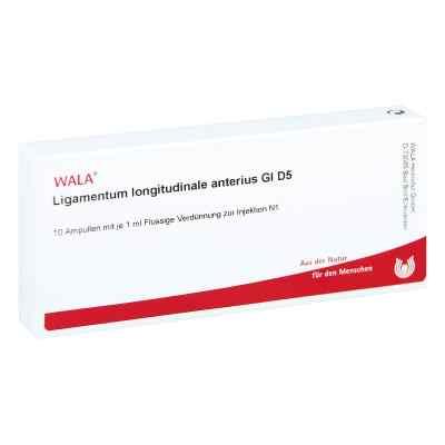 Ligamentum Longitud. Anter. Gl D5 Ampullen  bei juvalis.de bestellen