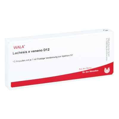 Lachesis E Veneno Gl D12 Ampullen  bei juvalis.de bestellen