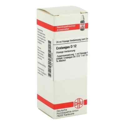 Crataegus D12 Dilution  bei juvalis.de bestellen
