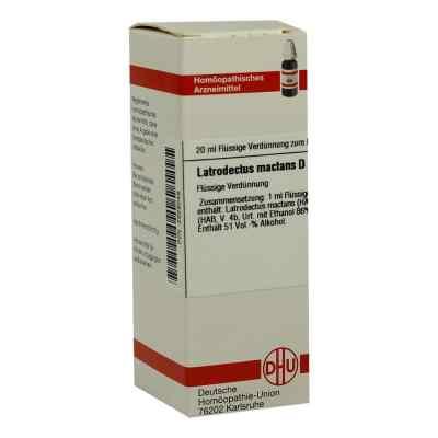 Latrodectus Mactans D12 Dilution  bei juvalis.de bestellen
