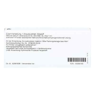 Medulla Ossium Gl D6 Ampullen  bei juvalis.de bestellen