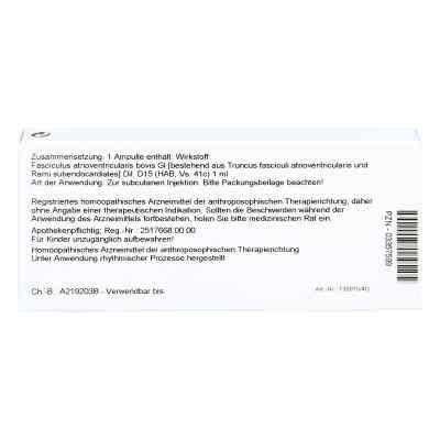 Fasciculus Atrioventr. Gl D15 Ampullen  bei juvalis.de bestellen