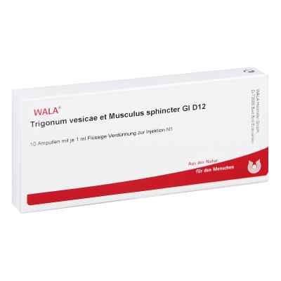 Trigonum Ves.et Musc.sph.gl D12 Ampullen  bei juvalis.de bestellen