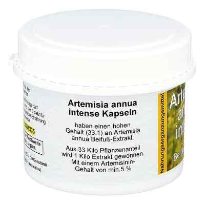 Artemisia Annua Beifuss Kapseln  bei juvalis.de bestellen