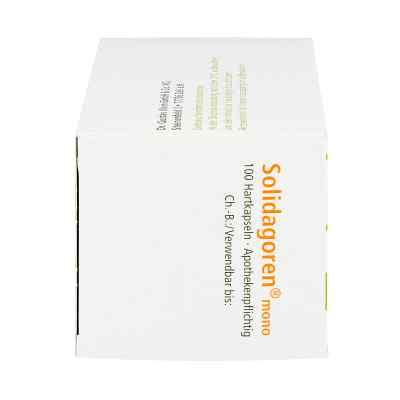 Solidagoren mono Hartkapseln  bei juvalis.de bestellen