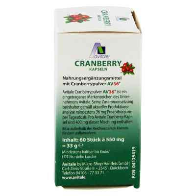 Cranberry Kapseln 400 mg  bei juvalis.de bestellen