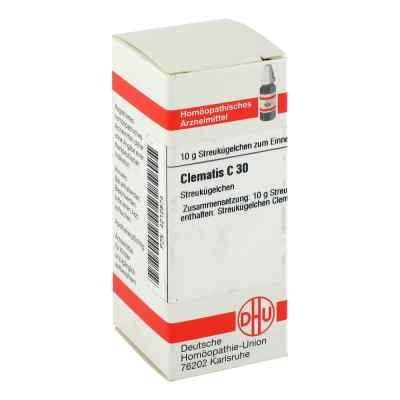 Clematis C 30 Globuli  bei juvalis.de bestellen