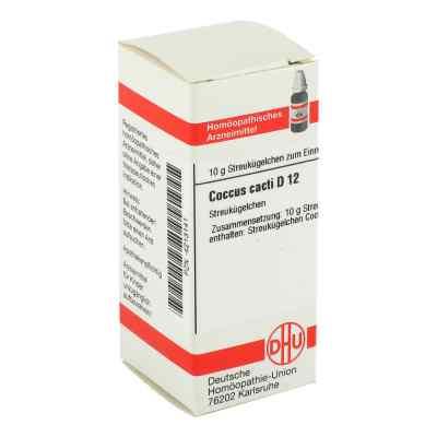 Coccus Cacti D 12 Globuli  bei juvalis.de bestellen
