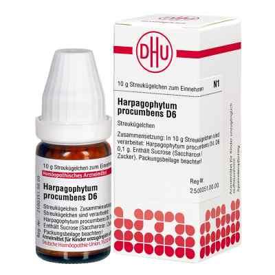 Harpagophytum Proc. D6 Globuli  bei juvalis.de bestellen