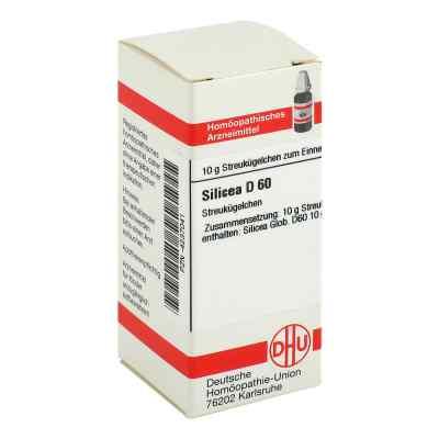 Silicea D 60 Globuli  bei juvalis.de bestellen